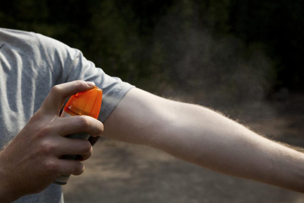 Cuidado con las Garrapatas: Protegiéndonos de las Enfermedades Relacionadas con la Garrapata