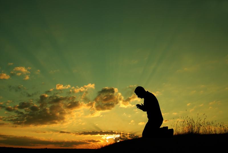 Cómo Actúan las Guías Espirituales y qué se Puede Esperar de los Ángeles Guardianes